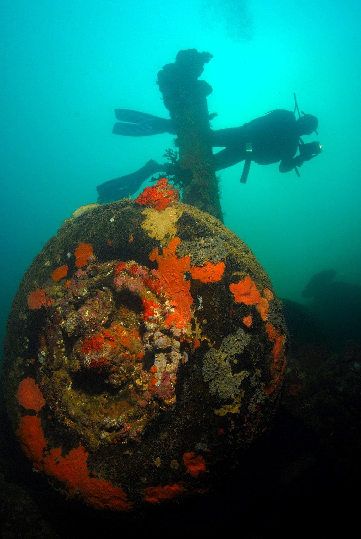 Scuba Diving in Vanuatu | Image Credit: Roderick Eime from Australia, Vanuatu Scuba Diving - Million Dollar Point (7354473778), CC BY 2.0